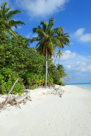 Malediven_2